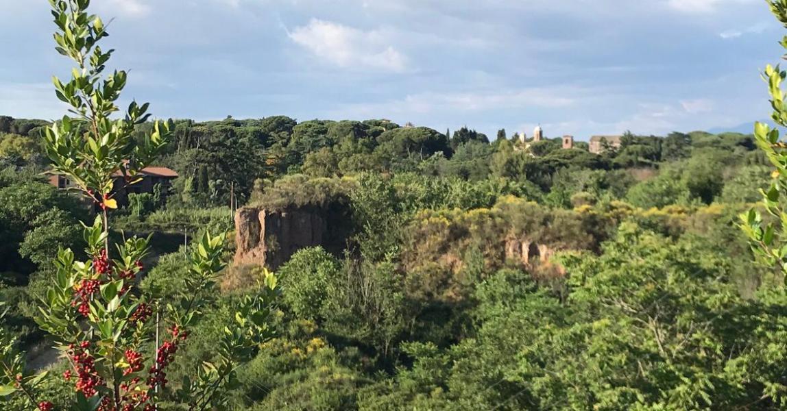 Alla scoperta dell'agro romano: la tenuta di Tor Marancia